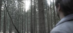 Pascal Klein auf der Suche nach dem passenden Holz