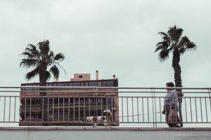 Sightseeing in Palma de Mallorca | Reisebericht aus Palma |Mr. Düsseldorf