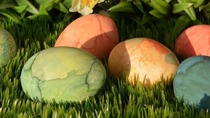 Happy Easter mit Mr. Düsseldorf | Magazin | Mr. Düsseldorf