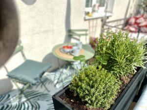 Für Kräuter ist auch gesorgt auf dem Sonnen-Balkon   8 Tipps für euren grüneren Balkon mit Bogie's   Mr. Düsseldorf 2021
