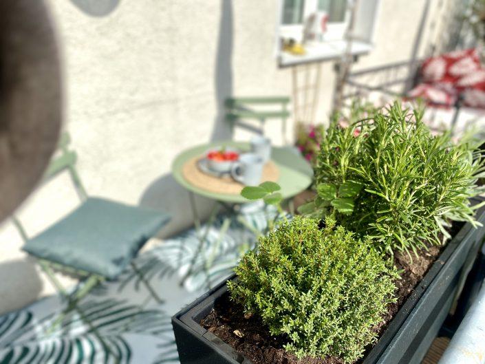 Für Kräuter ist auch gesorgt auf dem Sonnen-Balkon | 8 Tipps für euren grüneren Balkon mit Bogie's | Mr. Düsseldorf 2021