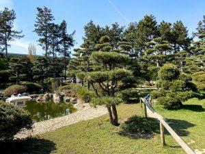 Japanischer Garten | Mr. Düsseldorf & Foto Koch starten die Düsseldorfer Foto-Challenge | Foto: Alexandra Simankova