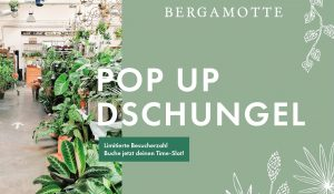 Bergamotte Pop Up Dschungel   Mr. Düsseldorf  Düsseldates  Foto: Bergamotte